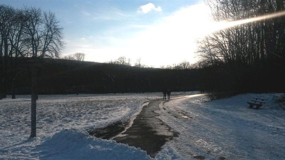 Winterspaziergang-Walk-Winterwonderland-Lainzer-Tiergarten_940x527